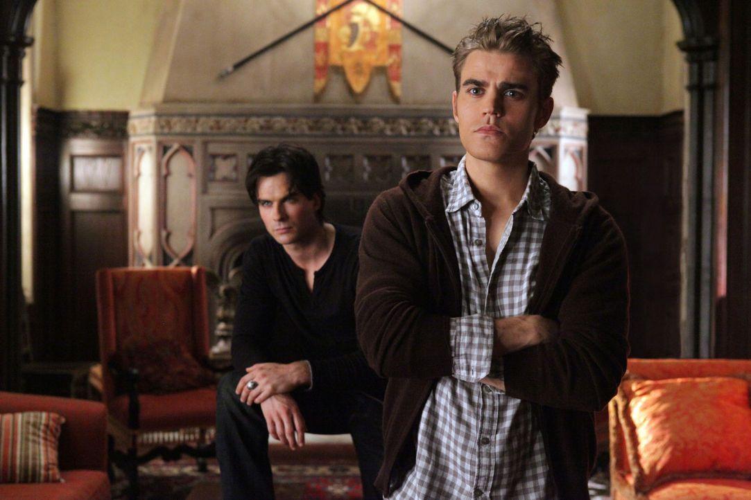 Die Salvatore-Brüder sind fest entschlossen, ihre ehemalige Geliebte Katherine zu töten: Stefan (Paul Wesley, r.) und Damon (Ian Somerhalder, l.)... - Bildquelle: Warner Brothers
