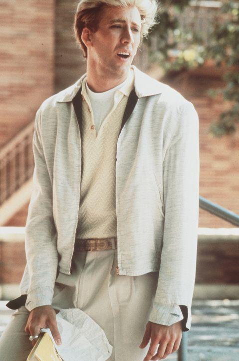 Peggy Sue will sich von ihrem Mann Charlie (Nicolas Cage) scheiden lassen. Beim Jubiläumstreffen ihres Schuljahrgangs fällt sie in Ohnmacht und fi... - Bildquelle: TriStar Pictures