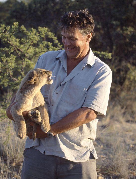 Für seine spektakulären Tierdokumentationen entwickelte der Tierfilmer, Regisseur und Produzent John Downer einen speziellen ferngesteuerten Kamer... - Bildquelle: John Downer Productions Philip Dalton/BBC/John Downer