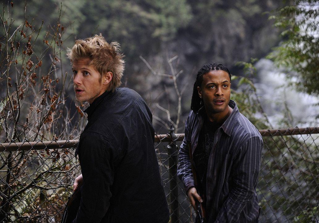 Hoffen, lebend von der Insel zu kommen - doch wird Wakefield Erbarmen mit ihnen haben?: Danny (Brandon Jay McLaren, r.) und Sully (Matt Barr, l.) ... - Bildquelle: 2009 CBS Studios Inc. All Rights Reserved.