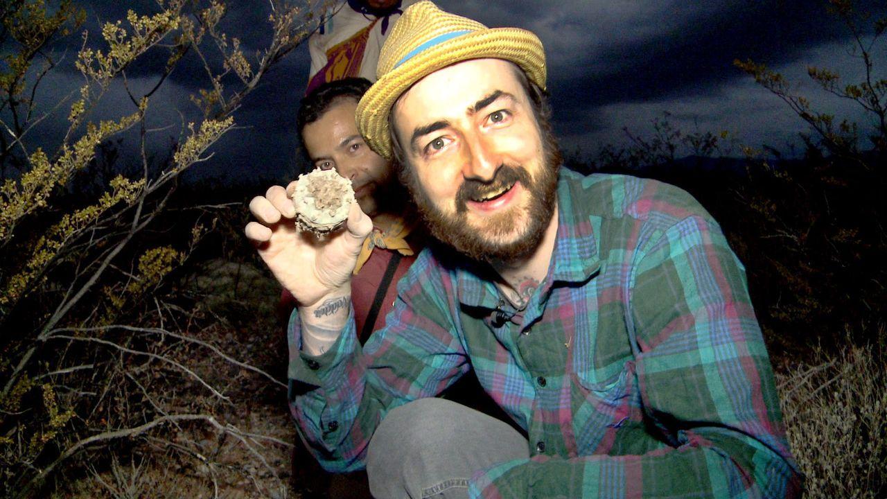 """Mit einer gehörigen Portion Abenteuerlust und einer unbändigen Neugier nimmt der 30-jährige Journalist Oliver Plöger bei """"Crazy Planet - Die 100... - Bildquelle: ProSieben"""