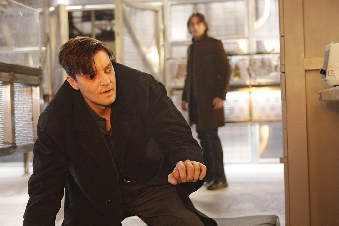 Als Mick (Alex O'Loughlin, hinten) die Hand von Lance (Jason Butler Harner, vorne) in Brand setzt, kann sie der Vampir selbst wieder heilen ... - Bildquelle: Warner Brothers