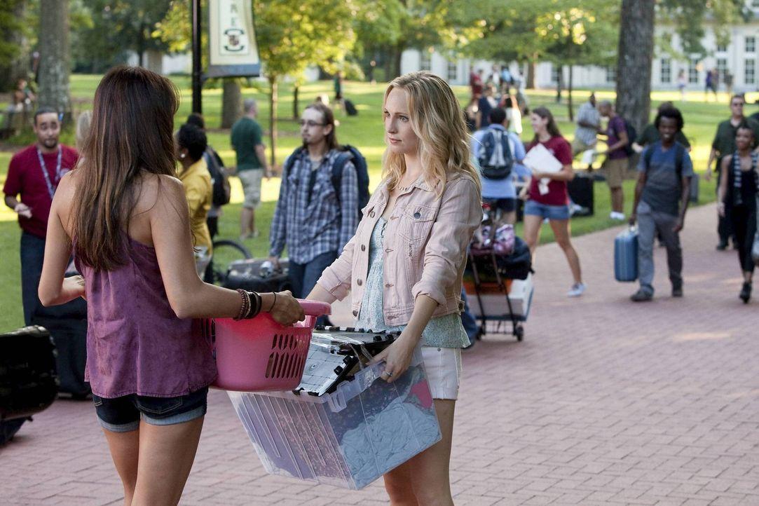 Elena (Nina Dobrev, l.) erzählt Caroline (Candice Accola, r.) von ihrem seltsamen Gefühl Stefan betreffend. Was wird sie tun? - Bildquelle: Warner Brothers