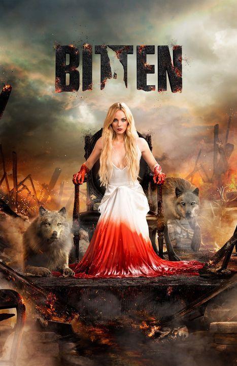 (3. Staffel) - Bitten - Artwork - Bildquelle: 2016 She-Wolf Season 3 Productions Inc.