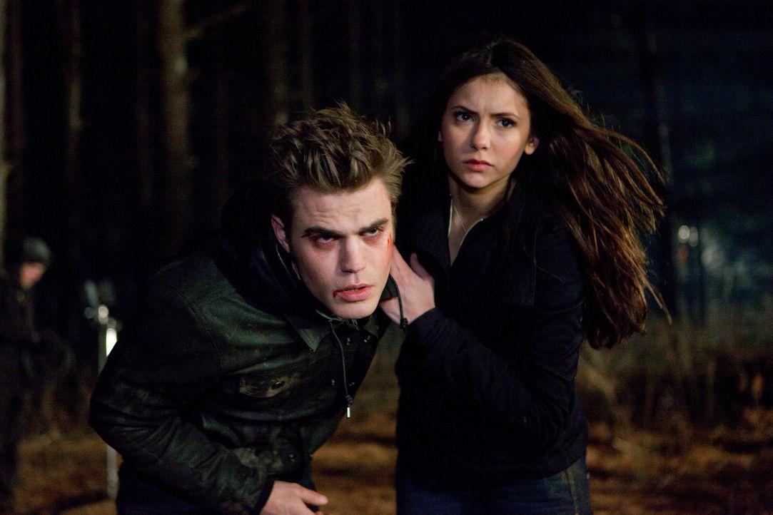 Auch dank Elena (Nina Dobrev, r.) wird Stefan (Paul Wesley, l.) gerettet - doch ist er stark genug, um zu überleben? - Bildquelle: Warner Bros. Television