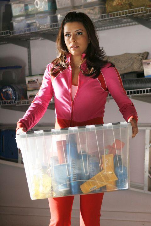 Gabrielle (Eva Longoria) merkt, dass Carlos immer mehr Xiao-Meis Bedürfnisse an erste Stelle setzt, seit diese schwanger ist. Er lässt sie sogar im... - Bildquelle: 2005 Touchstone Television  All Rights Reserved