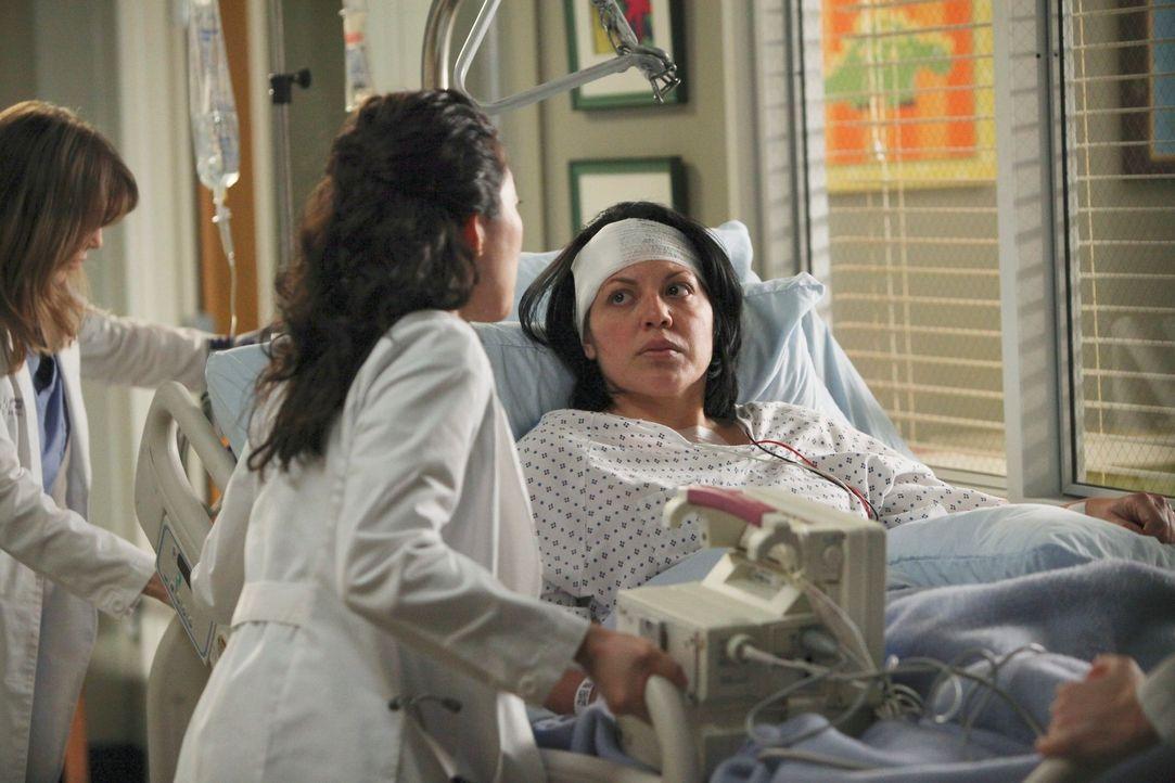 Meredith (Ellen Pompeo, l.) und Cristina (Sandra Oh, M.) stehen Callie (Sara Ramirez, r.) so gut sie können, bei ihrer Genesung bei ... - Bildquelle: ABC Studios