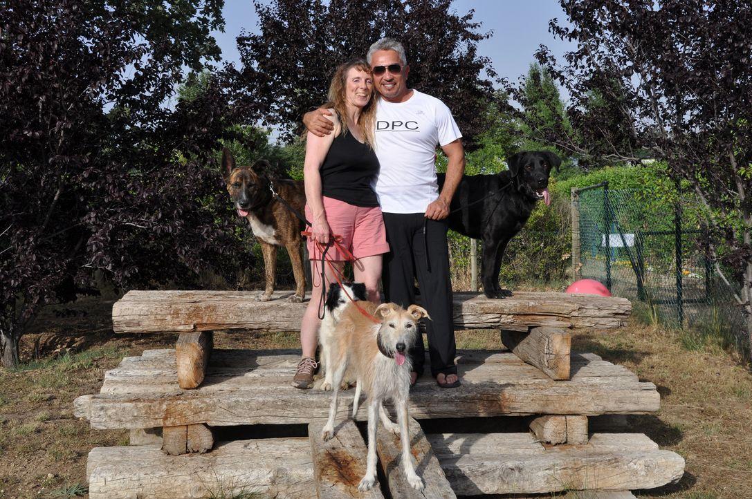 Cesar Millan: Auf den Hund gekommen mit Jenni Cross - Bildquelle: © 360 Powwow, LLC / Belén Ruiz Lanzas