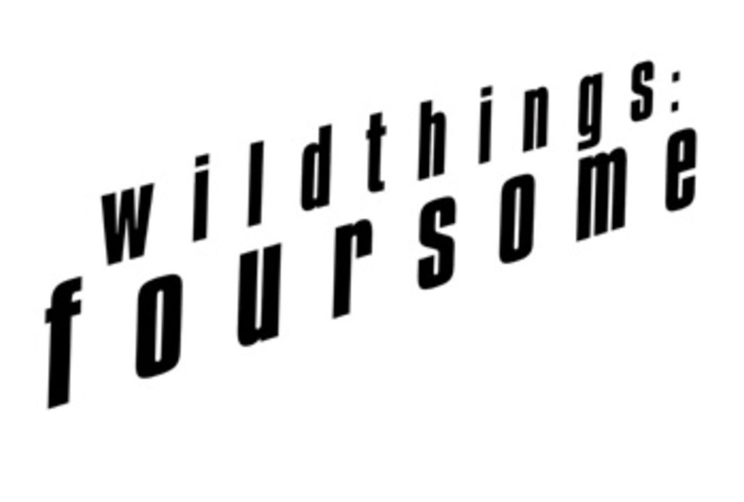 Wild Things: Foursome - Bildquelle: 2010 Sony Pictures Worldwide Acquisitions Inc. All Rights Reserved.