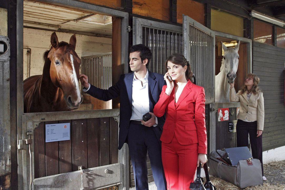 Während David (Mathis Künzler, l.) und Mariella (Bianca Hein, M.) den Stall von dem Rennpferd Bluestar besichtigen, fühlt sich Lisa (Alexandra Nelde... - Bildquelle: Noreen Flynn SAT.1 / Noreen Flynn