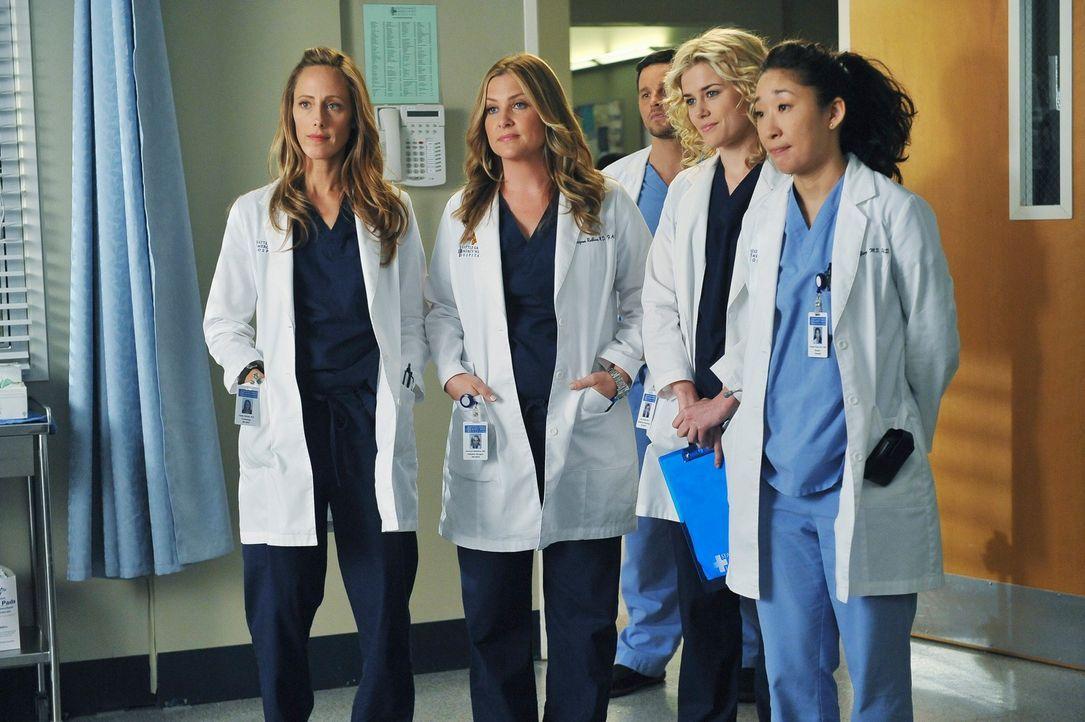 Auf Alex (Justin Chambers, M.), Arizona (Jessica Capshaw, 2.v.l.), Cristina (Sandra Oh, r.), Teddy (Kim Raver, l.) und Dr. Lucy Fields (Rachel Taylo... - Bildquelle: ABC Studios