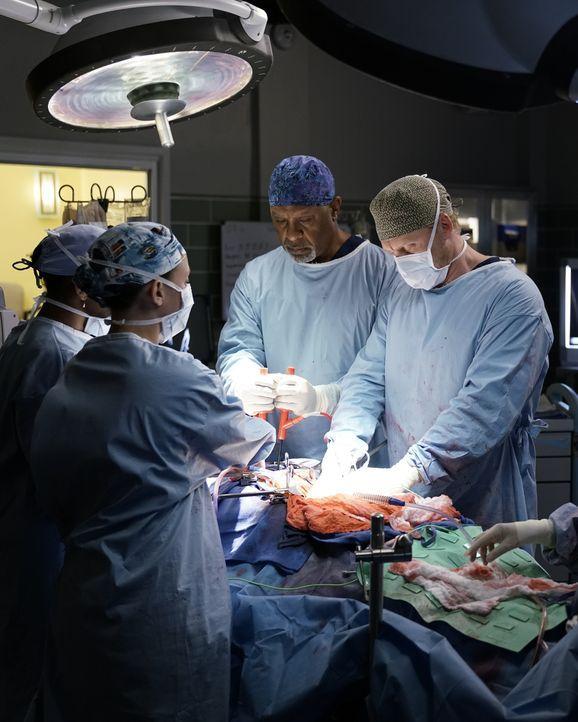 Kümmern sich um einen Mann, der massive innere Verletzungen und Organschäden hat: Stephanie (Jerrika Hinton, l.), Meredith (Ellen Pompeo, 2.v.l.), O... - Bildquelle: Michael Desmond 2016 American Broadcasting Companies, Inc. All rights reserved. / Michael Desmond