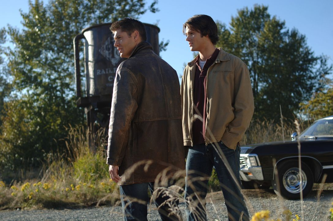 Sam (Jared Padalecki, r.) und Dean (Jensen Ackles, l.) suchen nach weiteren Hinweisen für die eigenartige Mordfälle ... - Bildquelle: Warner Bros. Television