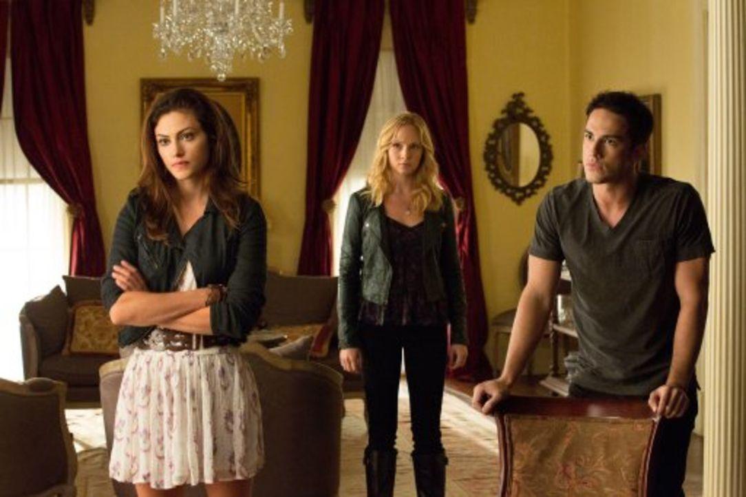 Das erste Zusammentreffen: Hayley (Phoebe Tonkin,l.), Caroline (Candice Accola, M.) und Tyler (Michael Trevino, r.) ... - Bildquelle: Warner Brothers