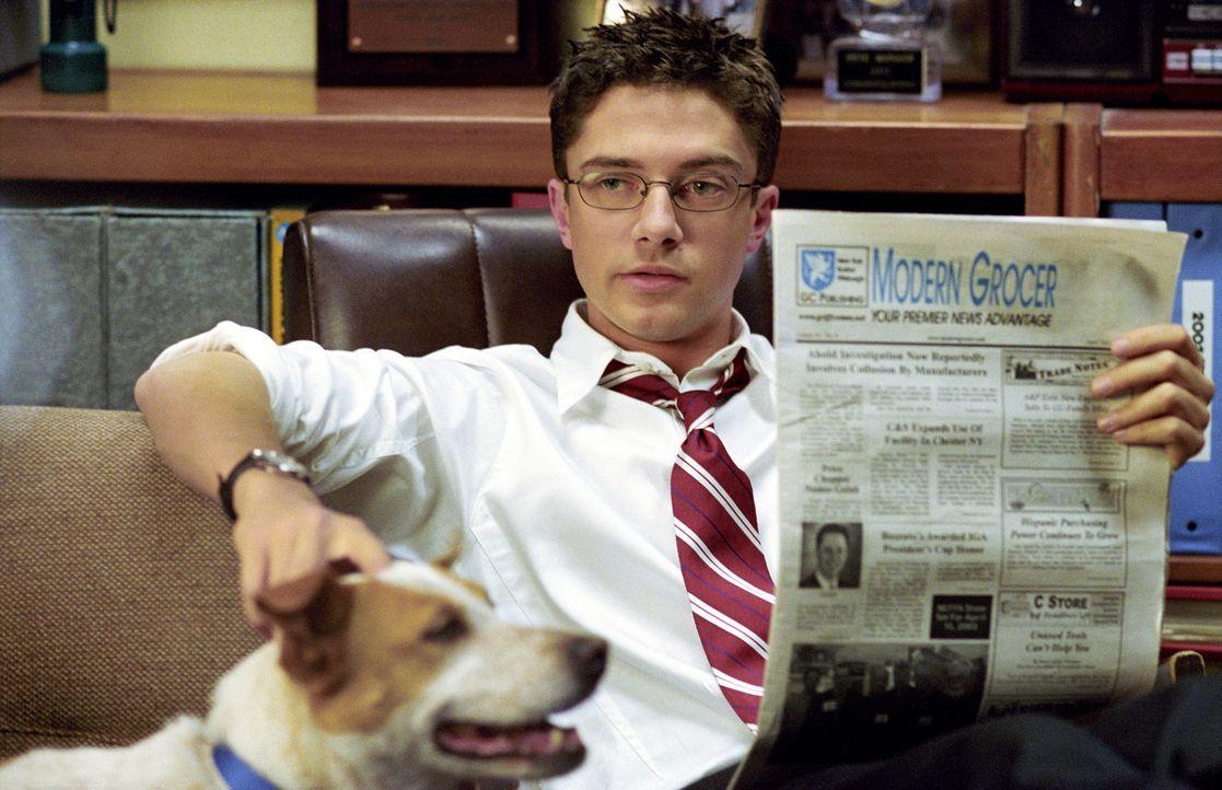 Ist total in seine Kollegin Rosalee verliebt: Pete (Topher Grace) ... - Bildquelle: 2004 DreamWorks LLC. All Rights Reserved.