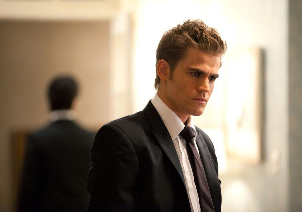Muss einsehen, dass er Katherine nicht töten kann, solange sie mit einem Bann belegt ist, welcher Elena jeden Schmerz den Katherine erfährt ebenso s... - Bildquelle: Warner Brothers