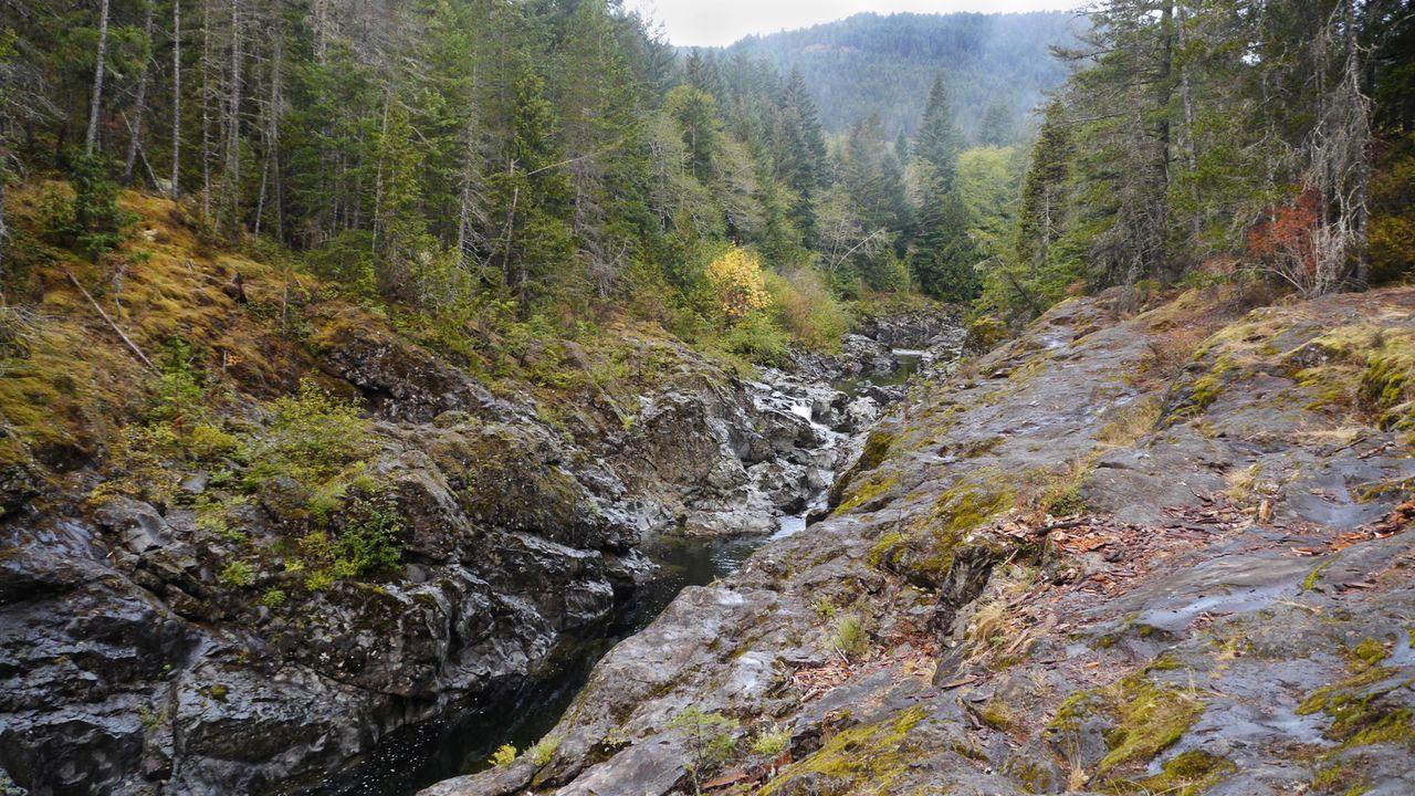 """In der bunten Natur Kanadas sind die """"Sooke Potholes"""" in Vancouver versteckt. Doch hat man sie einmal entdeckt, ist ein Tauchgang Pflicht ... - Bildquelle: 2017,The Travel Channel, L.L.C. All Rights Reserved"""