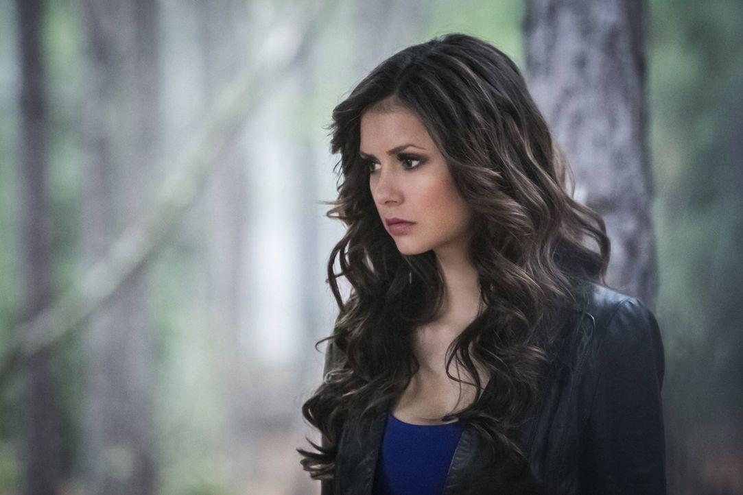 Elena Gilbert (Nina Dobrev) hat nur noch ein Ziel vor Augen: sie will Katherine endlich unschädlich machen ... - Bildquelle: Warner Brothers