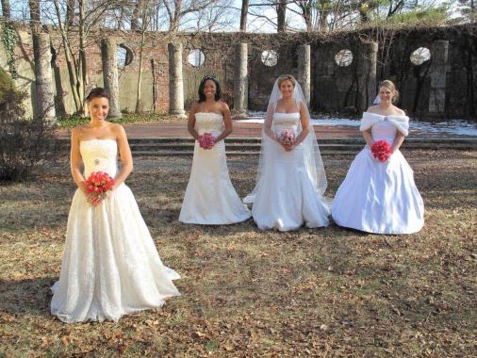Vier Bräute treten an, im Wettkampf um das schönste Hochzeitsfest: Anastasia (2.v.r.), Amber (2.v.l.), Jena (r.) und Kristin (l.) - Bildquelle: 2009 Discovery Communications, LLC