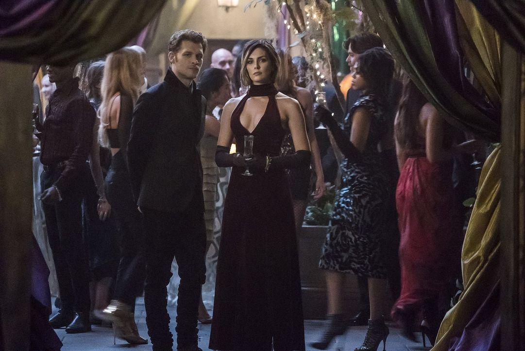 Als Klaus (Joseph Morgan, l.) Sofya (Taylor Cole, r.) trifft, glaubt er noch, dass sie sich immer auf die Seite des Meistbietenden stellen wird, doc... - Bildquelle: 2016 Warner Brothers