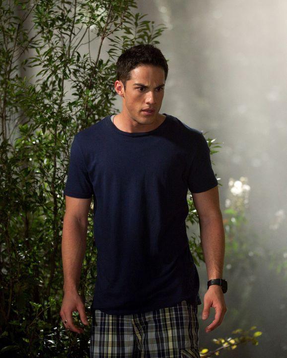 Macht eine schockierende Entdeckung in den Wäldern: Tyler Lockwood (Michael Trevino)... - Bildquelle: Warner Brothers