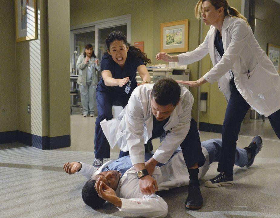 Als Shane (Gaius Charles, liegend) sich bei Alex (Justin Chambers, 2.v.r.), nach alldem was geschehen ist, entschuldigen möchte, greift dieser ihn a... - Bildquelle: ABC Studios