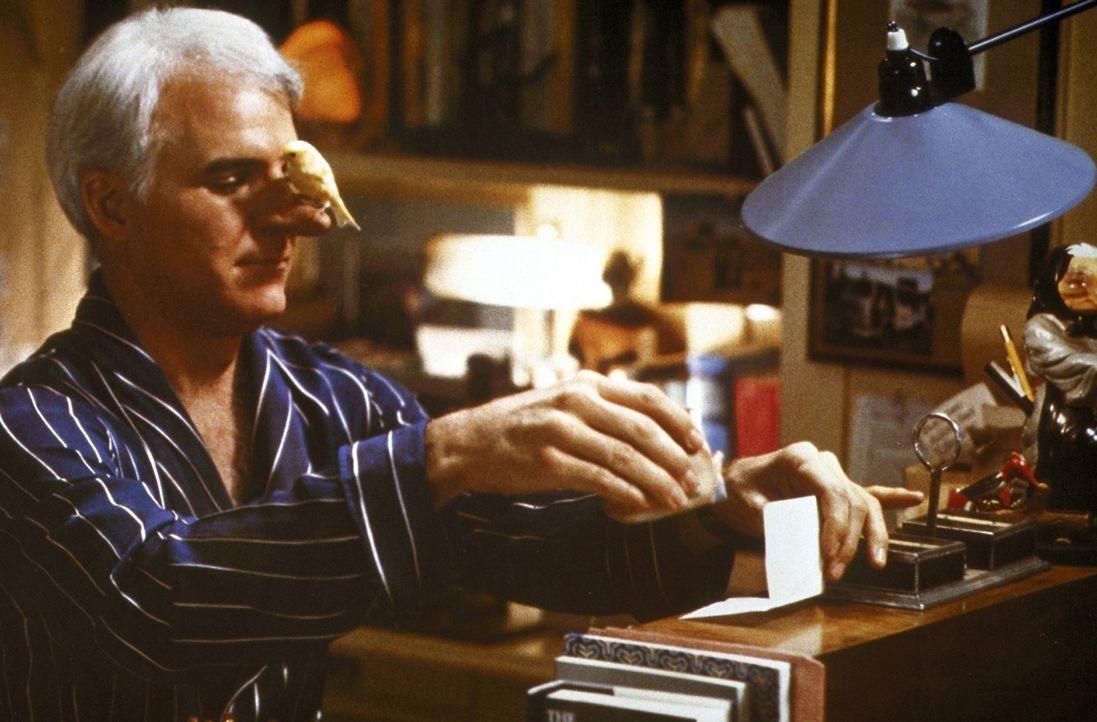 Der einzige, der sich über C. D.s (Steve Martin) große Nase freut, ist sein Kanarienvogel ... - Bildquelle: Copyright   1987 Columbia Pictures Industries, Inc. All Rights Reserved.