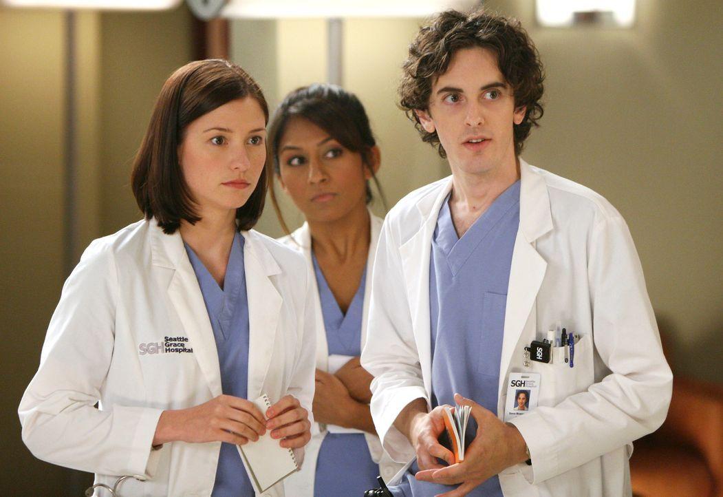 Die neuen Assistenzärzte der Seattle Grace Hospitals: Lexie (Chyler Leigh, l.), Danie (Amrapali Ambegaokar, M.) und Steve (Mark Saul, r.) ... - Bildquelle: Touchstone Television