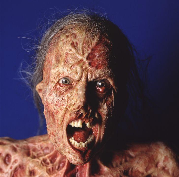 Es ist zwar schon 150 Jahre her, aber seitdem hängt der Fluch der Zahnfee über dem Provinznest Darkness Falls. Denn bis heute will die Zahnfee nur... - Bildquelle: 2004 Sony Pictures Television International. All Rights Reserved.