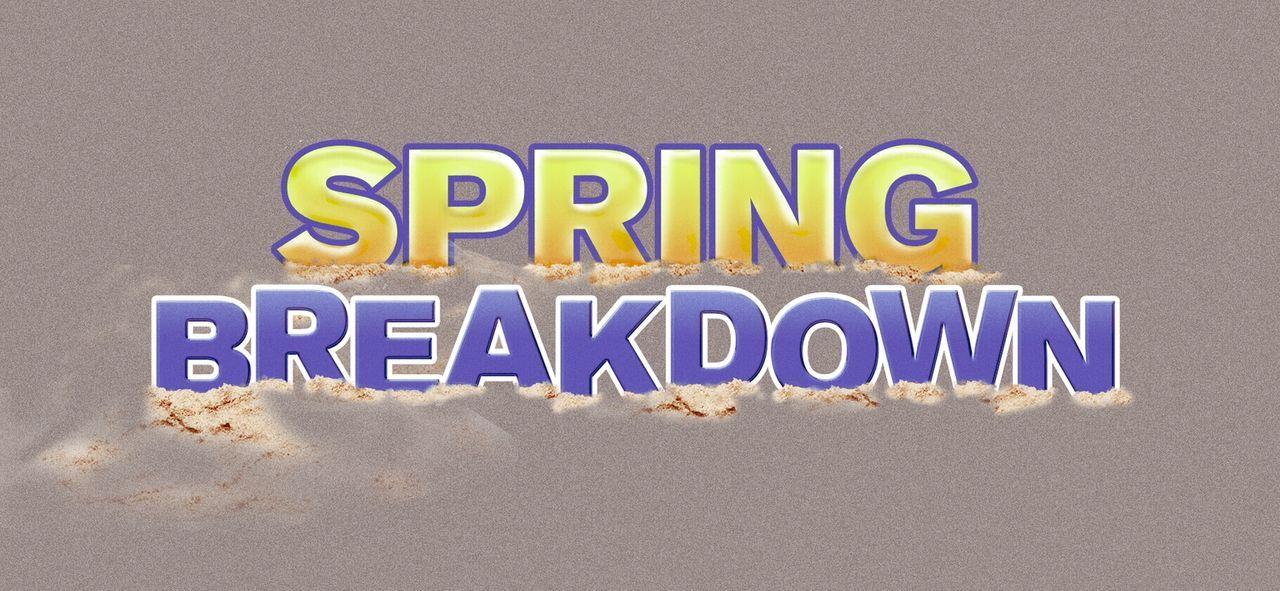 SPRING BREAKDOWN - Logo - Bildquelle: Warner Bros.