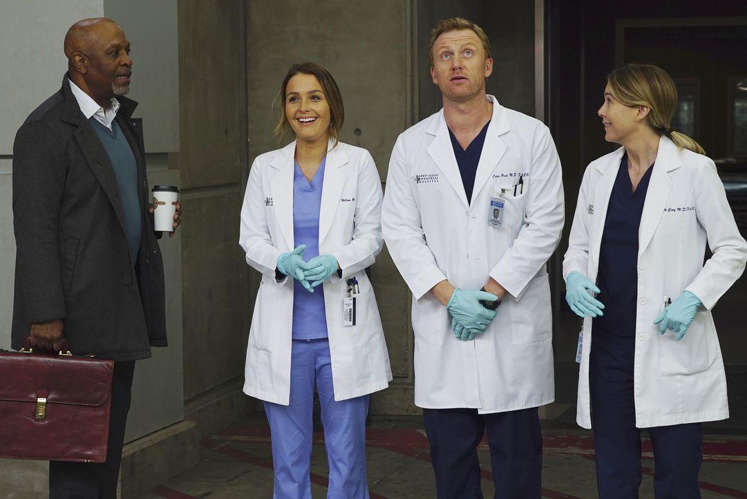 Während ein neuer Patient ins Krankenhaus eingeliefert wird, muss ich Arizona mit einem drohenden Sorgerechtsstreit auseinandersetzen und hofft auf... - Bildquelle: Richard Cartwright ABC Studios