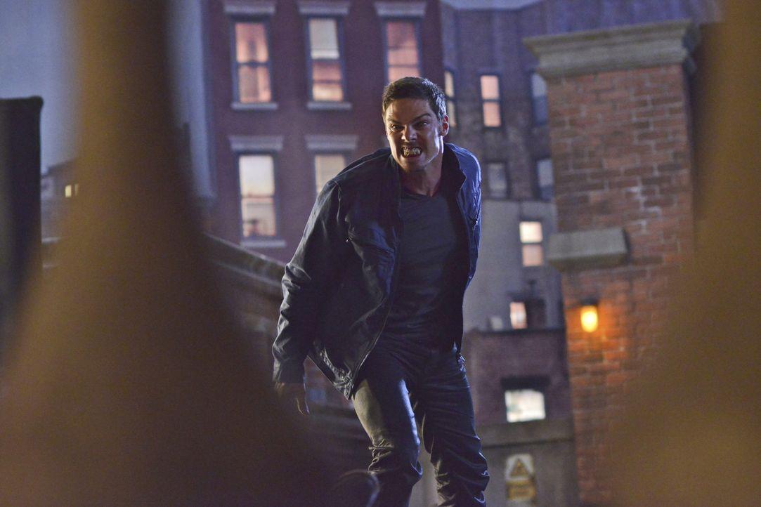 Während Cat mehr über Vincents (Jay Ryan) Mission erfahren möchte, wird sie von ihm auf sein Hausboot entführt ... - Bildquelle: 2013 The CW Network, LLC. All rights reserved.