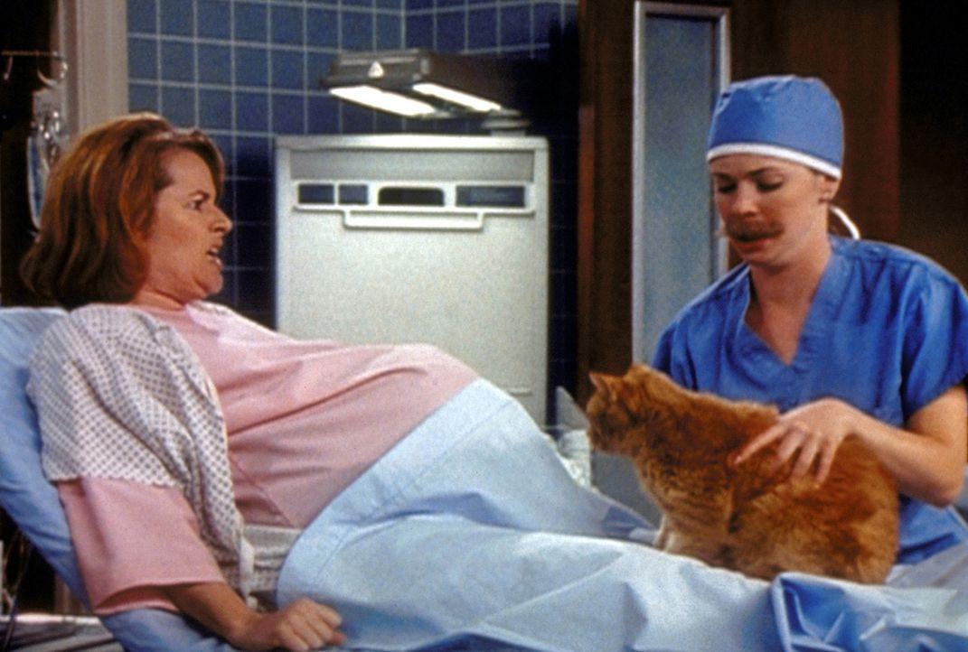 Sabrina (Melissa Joan Hart, r.) hat mit einem Zauberspruch die Schwangerschaft von Mrs. Kinkle und Salems Katzenfreundin Lola durcheinander gebracht... - Bildquelle: Paramount Pictures