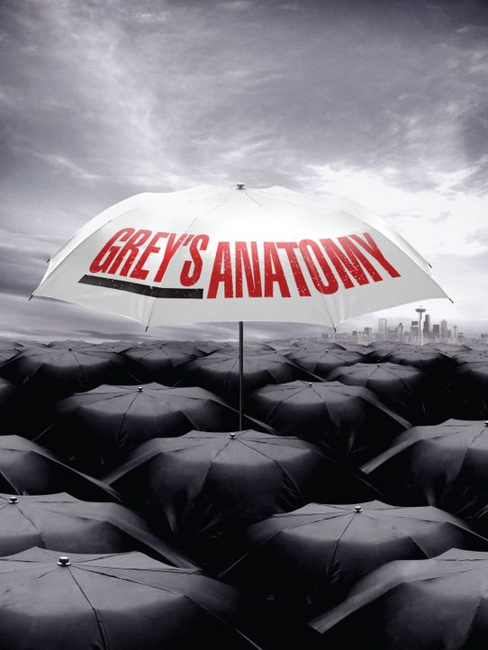 (6. Staffel) - Grey's Anatomy: Neues aus dem Seattle Grace Hospital ... - Bildquelle: Touchstone Television