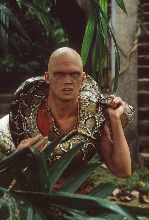 Der Schlangenbeschwörer und Fährtensucher Karait (Dyrk Ashton) führt nichts Gutes im Schilde ... - Bildquelle: MDP WORLDWIDE