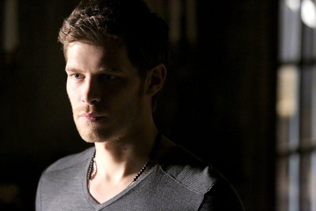 Erkennt Klaus (Joseph Morgan) zu spät, welche Pläne seine verschollen geglaubte Schwester wirklich hat? - Bildquelle: Warner Bros. Entertainment, Inc
