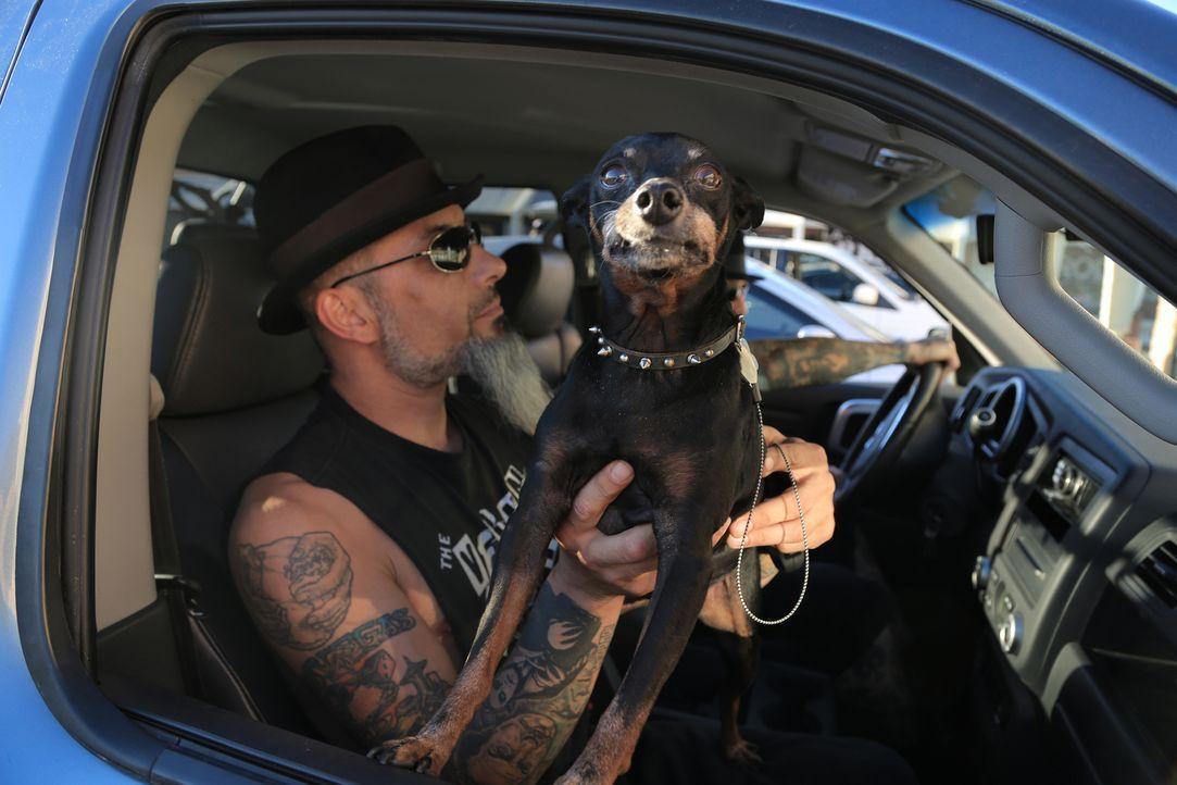 Ruckus (Bild) und Dirk treffen in Vegas auf einen Typen, der sein Tattoo als Anmachmethode benutzt, um Frauen aufzureißen ... - Bildquelle: 2013 A+E Networks, LLC