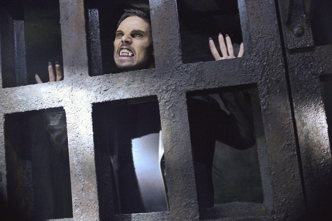 Muss seinen Freund J.T. retten, der entführt wurde: Vincent (Jay Ryan) ... - Bildquelle: 2013 The CW Network, LLC. All rights reserved.