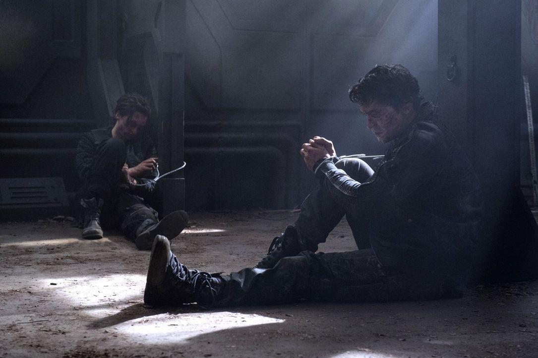 Ausgerechnet Murphy (Richard Harmon, l.) und Bellamy (Bob Morley, r.) werden zusammen in einem Raum festgehalten ... - Bildquelle: 2014 Warner Brothers