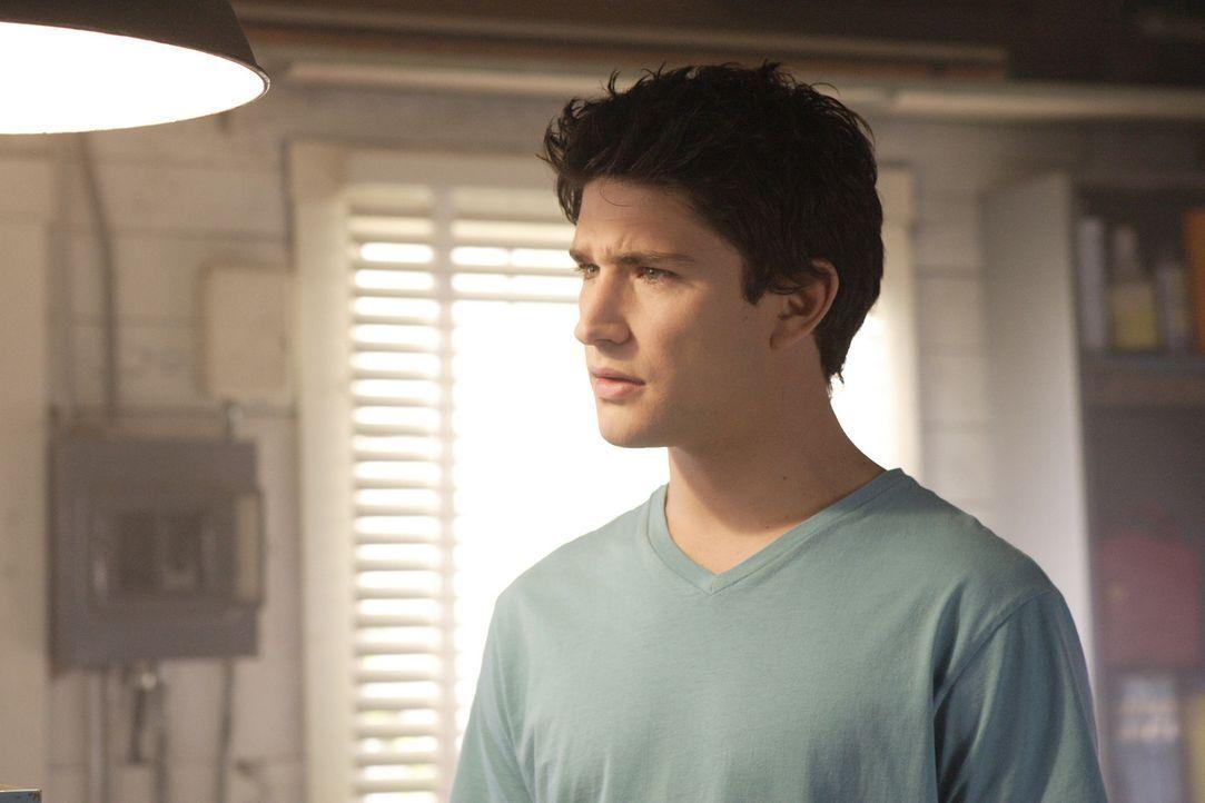 Durch die naive Art von Kyle (Matt Dallas), kommt Familie Trager immer wieder in äußerst peinliche Situationen ... - Bildquelle: TOUCHSTONE TELEVISION