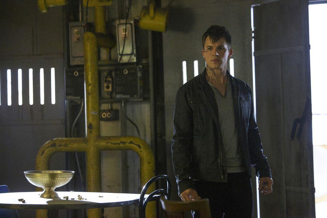 Während Roman (Matt Lanter) versucht, aus dem, was er über den Absturz gesehen hat, schlau zu werden, lädt Taylor zu einer Meteorregen-Party und Gra... - Bildquelle: 2014 The CW Network, LLC. All rights reserved.