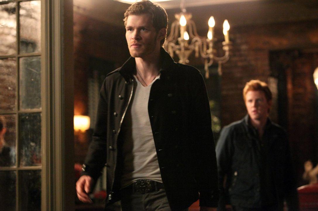 Klaus (Joseph Morgan, l.) kämpft weiter darum, Särge mit samt seiner Familie wieder zu bekommen ... - Bildquelle: Warner Brothers
