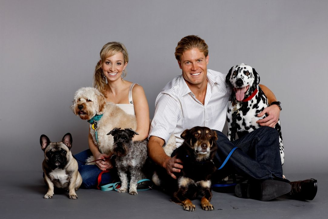 Tierarzt Dr. Chris Brown (r.) und seine Kollegin Dr. Lisa Chimes (r.) haben ihr Leben komplett ihren tierischen Patienten verschrieben ? Tierarzt Dr... - Bildquelle: Network Ten, Australia