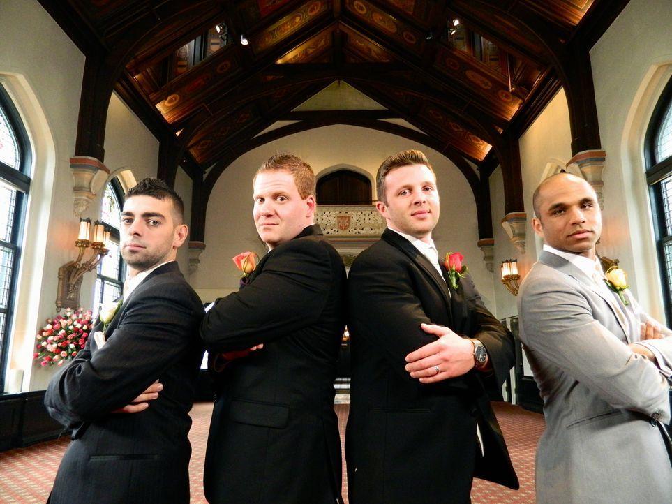 Wer wird die traumhafte Hochzeitsreise gewinnen: Rick (l.), David (2.v.l.), John (2.v.r.) oder Ryan (r.)? - Bildquelle: Richard Vagg DCL