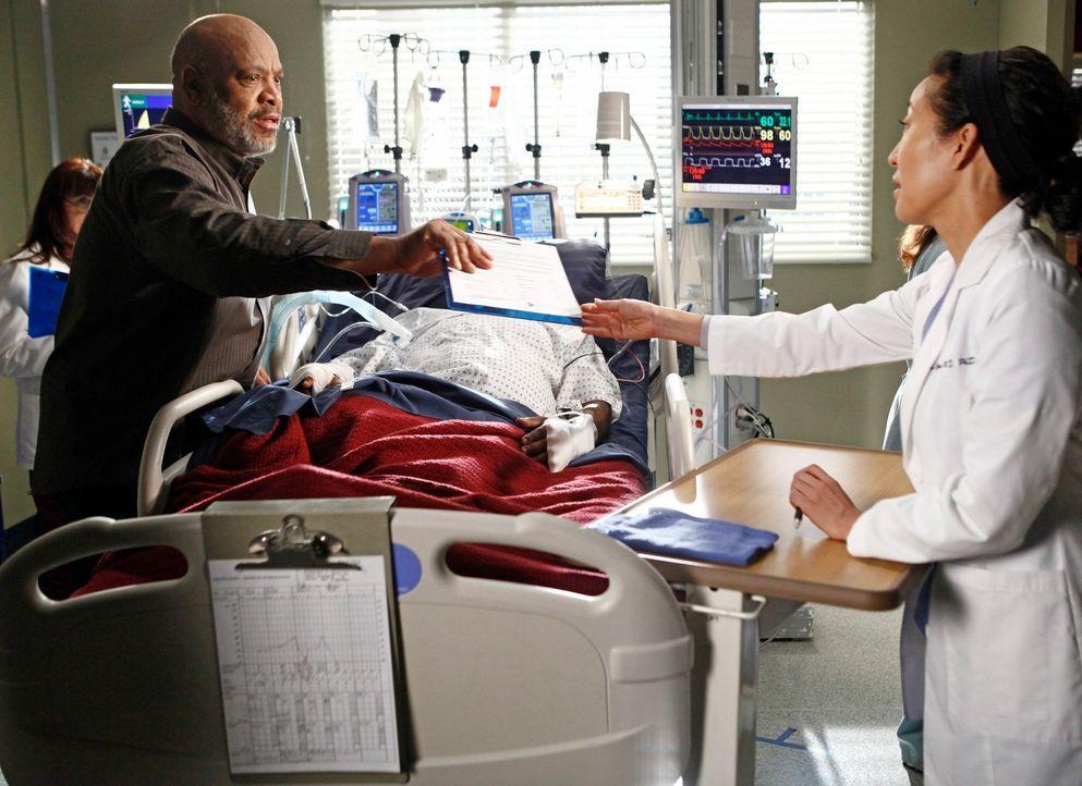 Während Derek die zögerliche Meredith ermutigt, wieder mit ihm in der Neurologie zu arbeiten, steht Cristina (Sandra Oh, r.) vor einer schwierigen A... - Bildquelle: ABC Studios
