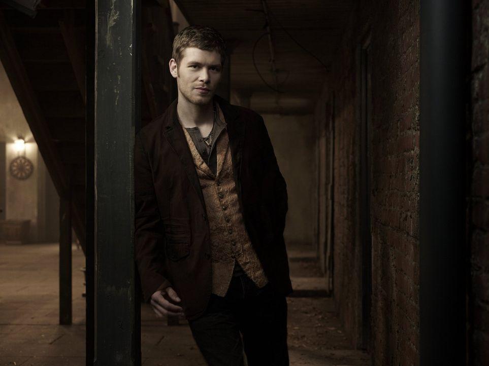(1. Staffel) - Klaus (Joseph Morgan) kämpft für seine Überzeugungen, egal, welche Verluste dies bedeutet ... - Bildquelle: Warner Bros. Television
