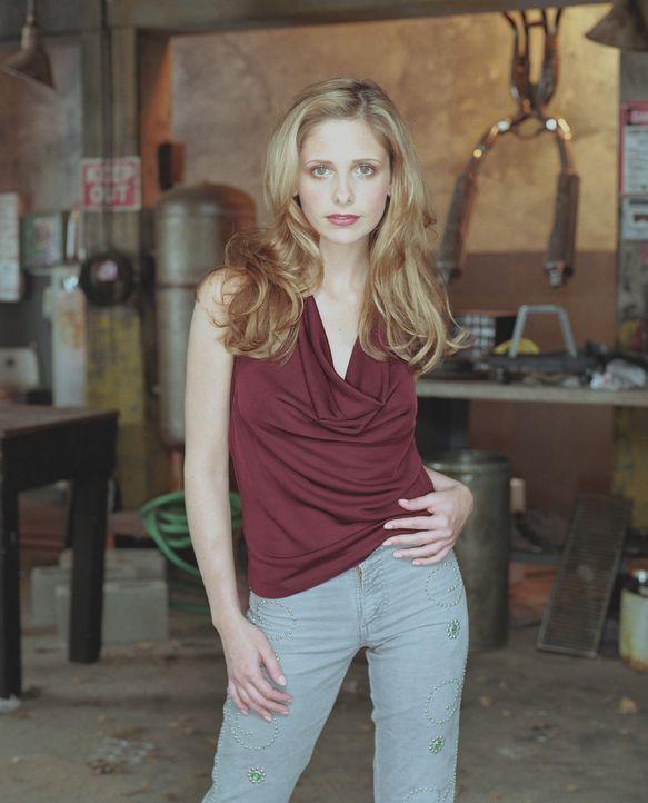 (6. Staffel) - Nachdem sie im Paradies war, ist der Alltag mit Dämonen, Geld- und Erziehungssorgen die Hölle. Zu all den Problemen fühlt Buffy (Sara... - Bildquelle: TM +   Twentieth Century Fox Film Corporation. All Rights Reserved.