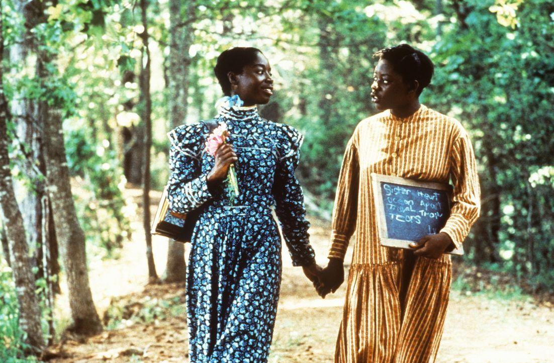 Die Schwestern Celie (Desreta Jackson, r.) und Nettie (Akosua Busia, l.) lieben sich über alles ... - Bildquelle: Warner Bros.