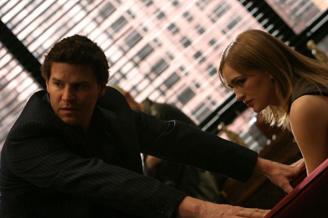 Angel (David Boreanaz, l.) hat Eve (Sarah Thompson, r.) beim Telefonat mit Lindsey erwischt und stellt sie zur Rede ... - Bildquelle: The WB Television Network