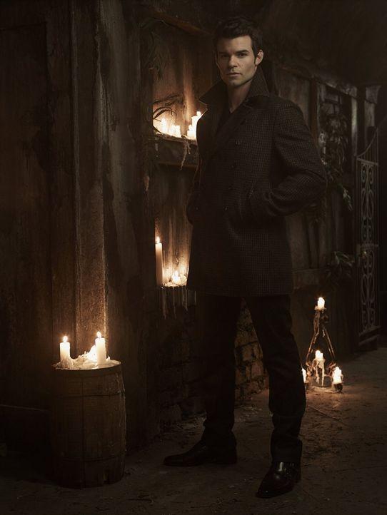 (1. Staffel) - Für den Urvampir Elijah (Daniel Gillies) war die Familie schon immer das wichtigste, sodass er seinen Geschwistern einiges verzeiht .... - Bildquelle: Warner Bros. Television